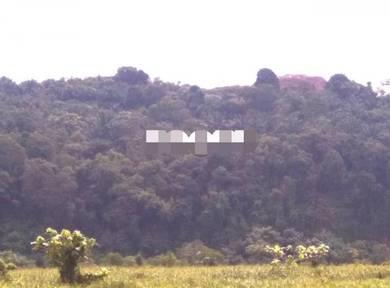 Agriculture Land (Tongkang Hill) Tongkang Pecah