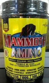 Mammoth Amino EAA+BCAA 100 servings