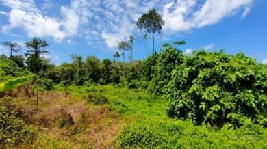 Tanah Pertanian Dengkil Sempadan Cyberjaya dan Sebelah ELITE Highway