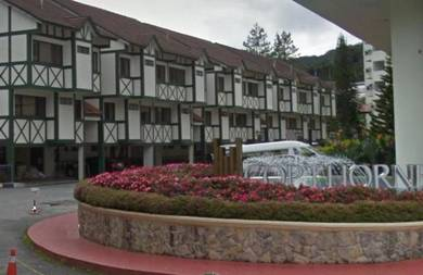 Cape town cameron highland homestay