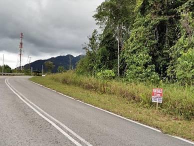 1st Lot Land Jalan Lundu Sampadi Matang