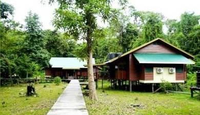 Bilit Adventure Lodge( Kota Kinabatangan)