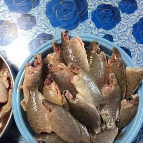 Perkasam dan ikan kering