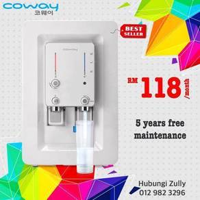 Coway Villaem Water Filter New2