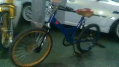 Basikal lajak