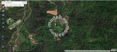 Papar Plantation Land For Sale