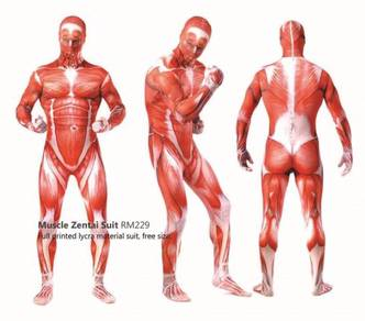 Muscle Costume Lycra Zentai Suit