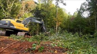 Bersih hutan & Clearing Hutan & Pasang pagar