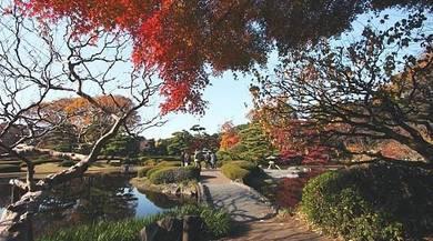 AMI Travel | 5D4N Best of Tokyo & Mt Fuji, Japan