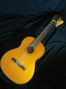 Cadiz CC39 Guitar