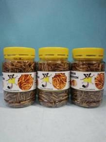 Dried Mealworm for Sugar Glider Hamster Bird 65g