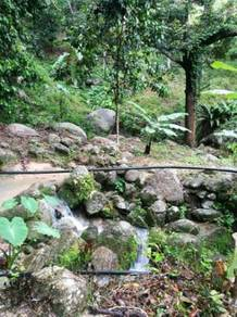 Pondok Upih , Balik Pulau DURIAN ORCHARD LAND 8.5Acres SEAVIEW