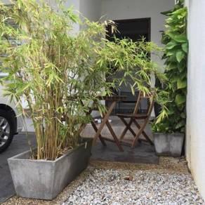 Concrete Planter / Pasu Konkrit
