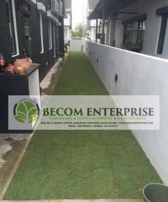 Rumput grass hiasan landskap terbaik