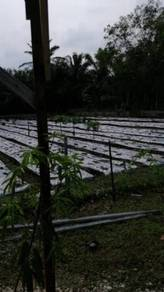 Pontian 2 Acre Agricultural Land With Water & Electricity FOR SALE