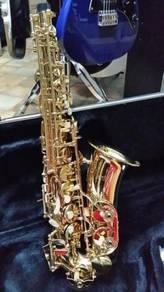Alto Saxophone Ashton (SX10)