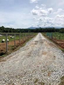 Lot Banglo Murah Bagan Sena Kulim Kedah