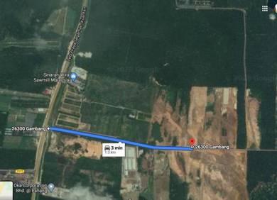 9 acre land at gambang