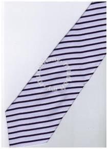 EPP07 Purple Black White Striped Formal Neck Tie