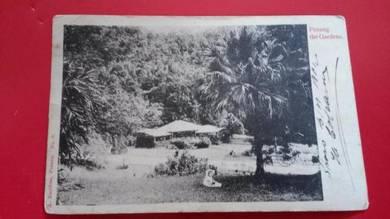 Postcard Penang Gardens BELGIUM 1902 No 412