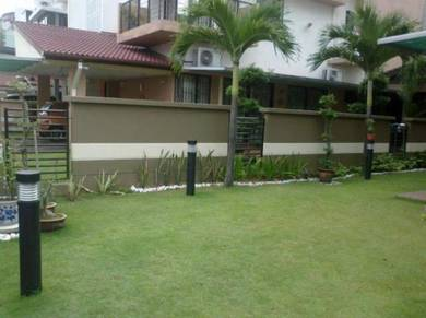 Carpet gras. rumput philipine japanes pearl landsc