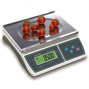 Camry digital scale weighing counting timbang