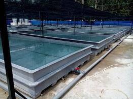 Fiberglass Tank ( Aqua )