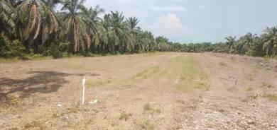 Tanah pertanian/tapak rumah pekan sabak bernam