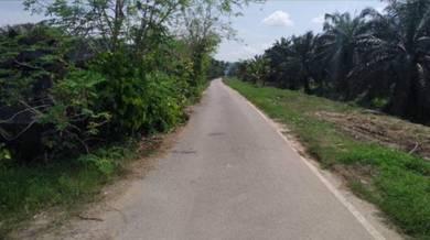 Superb 5ac Freehold Land in Telok Panglima .Below Mkt Value! Good Buy!