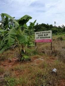 Tanah Lot Murah di Matang Taiping
