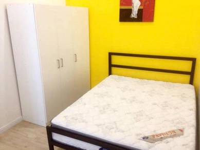 Master/Medium/Single Room in Petaling Jaya/Seksyen 17 for rent
