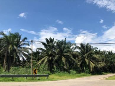 Simpang Rengam Johor Agricultural Corner Land For Sale
