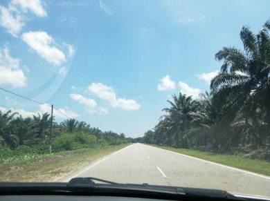 (sell below market) Pontian, pekan nenas agriculture land