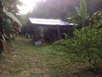 Tanah pertanian di hulu langat batu 11