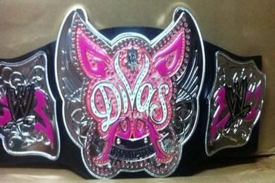WWE Championship The Divas Title Belt