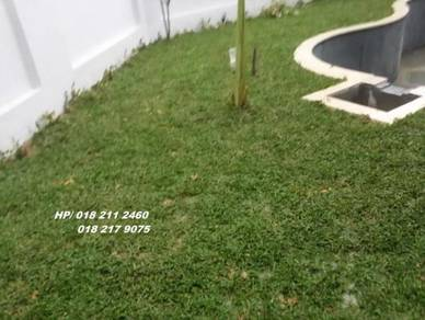 Tanam Rumput / Potong Pokok,, Landscape Artificial
