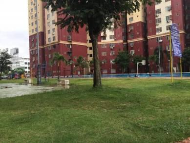 Lokasi Strategik Segala Tersedia Rumah di Sunway Mentari untuk Di Sewa