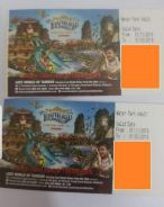 All park pair ticket