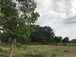Hill Top Bungalow Land For Sale , Rasah Kemayan S2 Seremban