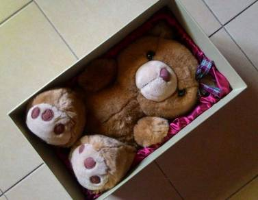 Dy Large Furry Teddy Bear In A Box for Caring Hand