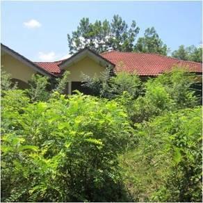 Bungalow Kg Cat Rimau - Tanah Merah, Kelantan (DC10033440)