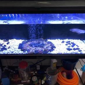 Aquarium stones Aquascape Fish tank decoration