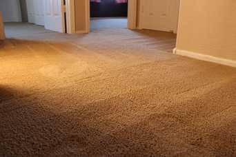 Office Carpet Roll provide installation (115)
