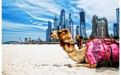 Trip Dubai 5d4n September 2018