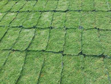Tanam Rumput pokokPotong Trim& pokok Artificial pt