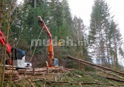 Japan Imported HItachi Timber Yarder TY04M