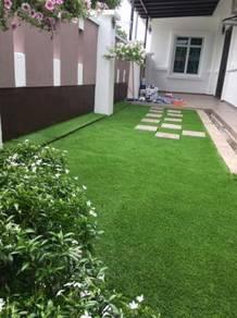 Rumput karpet / Pakej Lengkap Laman / Grass
