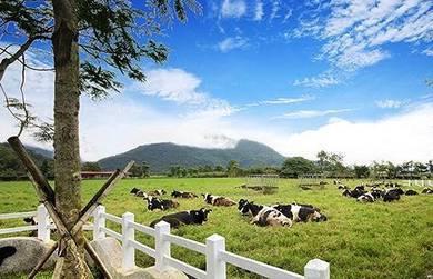 6d taiwan taroko national park & hualien trip