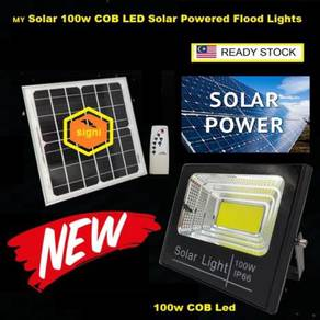 Solar 100w 200w COB LED Solar Powered Flood