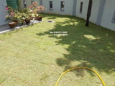 Tanam Rumput tiruan Pokok. Potong4 Tirim pokok